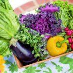 主要野菜・果物のカロリー・炭水化物量の一覧&ランキング表(一食ベース)減量時の参考に!