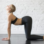 猫のポーズのやり方&効果|肩こり・腰痛の緩和、解消に!