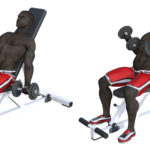 インクライン・ダンベルカールのやり方&効果|上腕二頭筋を鍛え抜くトレーニング!